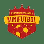 foto de la asociacion española de minifutbol